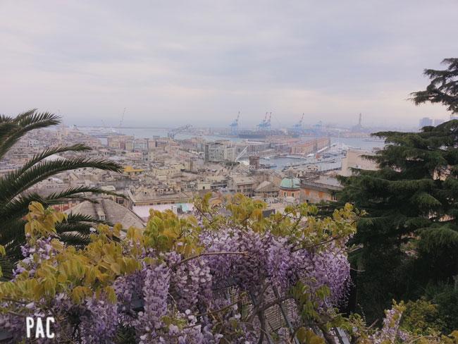Y esta es su ciudad: Génova.
