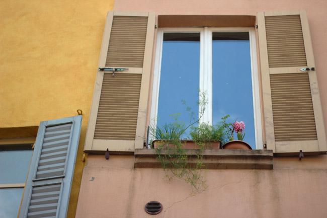El problema de viajar Ventanas de Bologna, Sharon Borgstrom