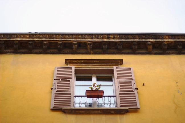 Ventanas de Bologna, Sharon Borgstrom