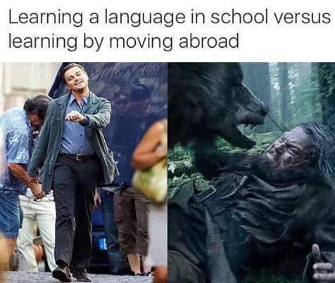 learn new language moving abroad