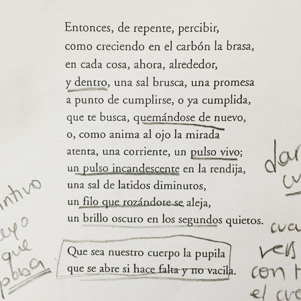 Este es el poema de Alejandro Crotto. Poesía mágica.