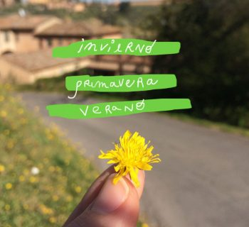 Las estaciones de una nueva vida en Siena